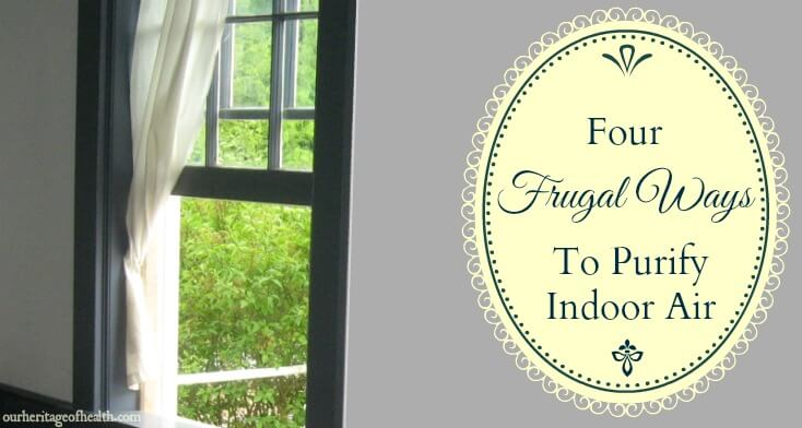 4 frugal ways to purify indoor air | ourheritageofhealth.com