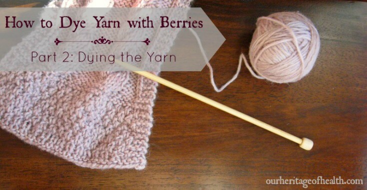 How to dye yarn with berries - Part 2: Dying the yarn | ourheritageofhealth.com