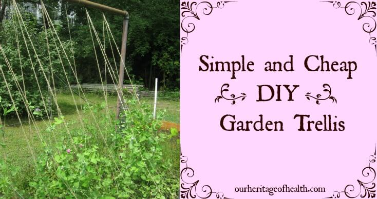 Simple And Cheap Diy Garden Trellis - Our Heritage Of Health