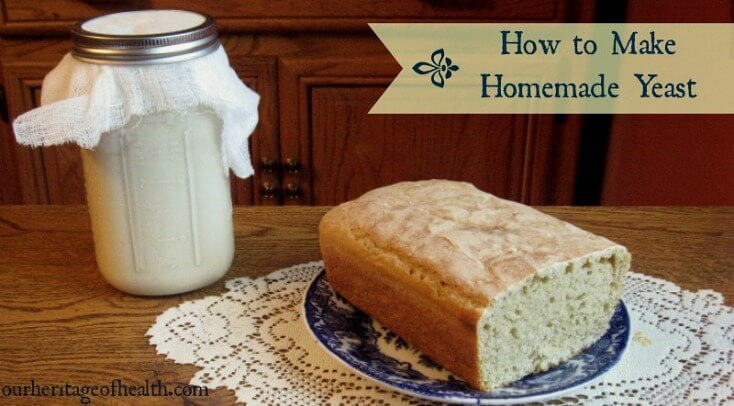 How to make homemade yeast | ourheritageofhealth.com