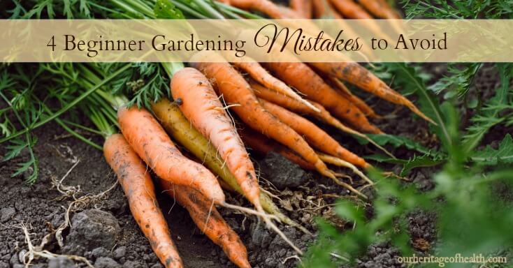 4 Beginner Gardening Mistakes to Avoid Our Heritage of Health