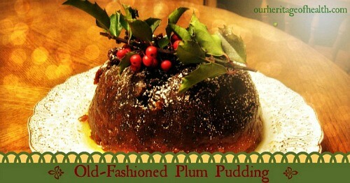 Old-fashioned plum pudding