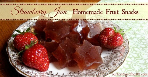 Strawberry jam homemade fruit snacks