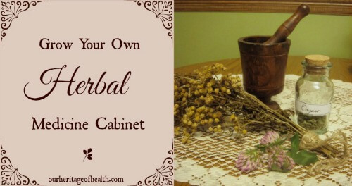 Grow your own herbal medicine cabinet