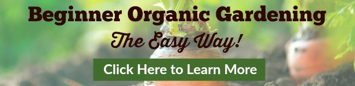 Beginner Organic Gardening - The Easy Way