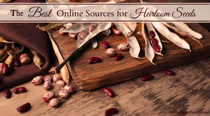 The best online sources for heirloom seeds that are non-GMO and open-pollinated
