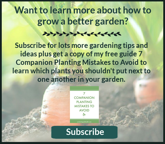 Description of newsletter to sign up for more tips for growing a better garden and a bonus free guide for 7 companion planting mistakes to avoid.